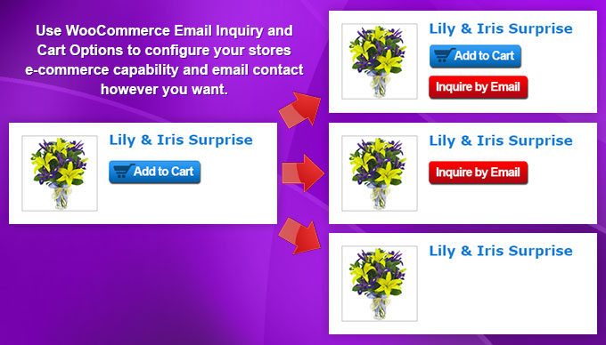 WooCommerce Email Inquiry & Cart Options
